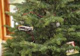 shrinkydink_ornament_on_tree.jpg